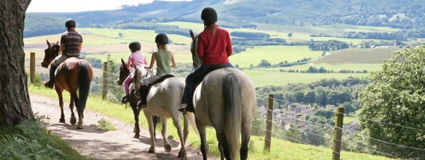 Предприемачество, езда и айкидо ще се срещнат в летен лагер за младежи